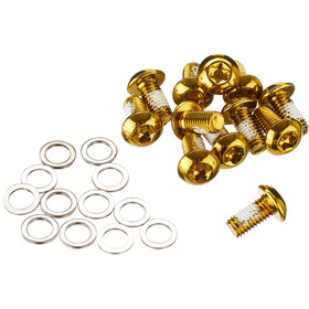 NOW8 Steel Bolts for Disc Brake Rotor 12 Pieces, gold